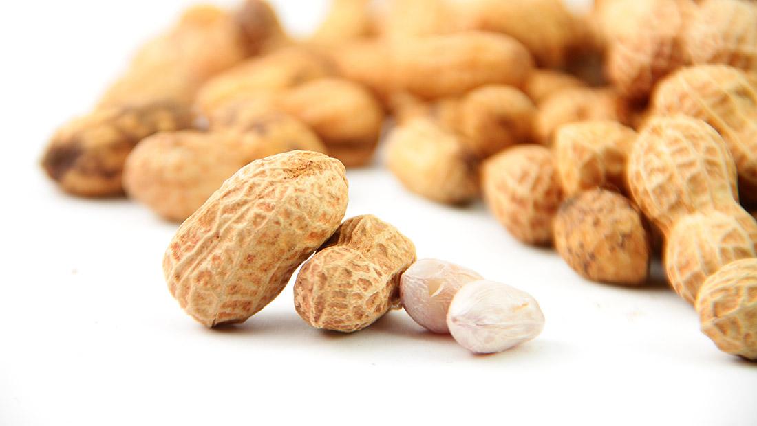 Elisa_Systems_peanuts